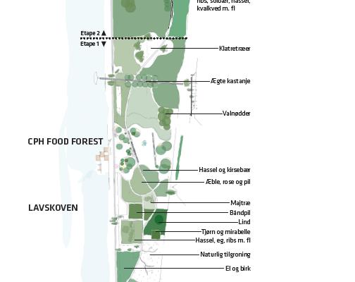 Plan for Københavns nye byskov