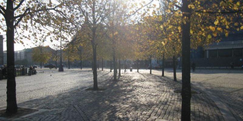 Træer i København